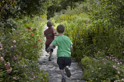 Summer Adventures with the National Trust