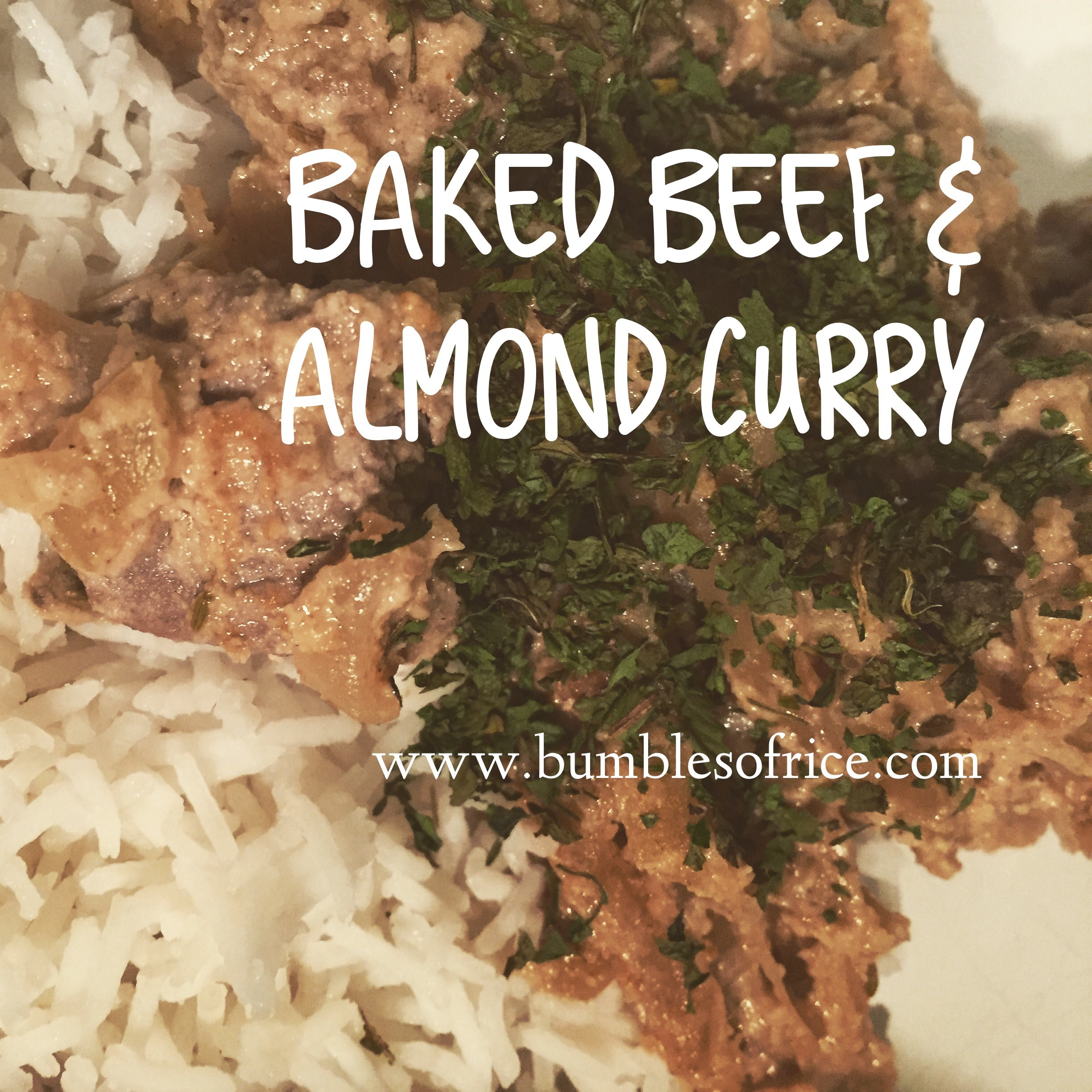 Baked Beef and Almond Curry