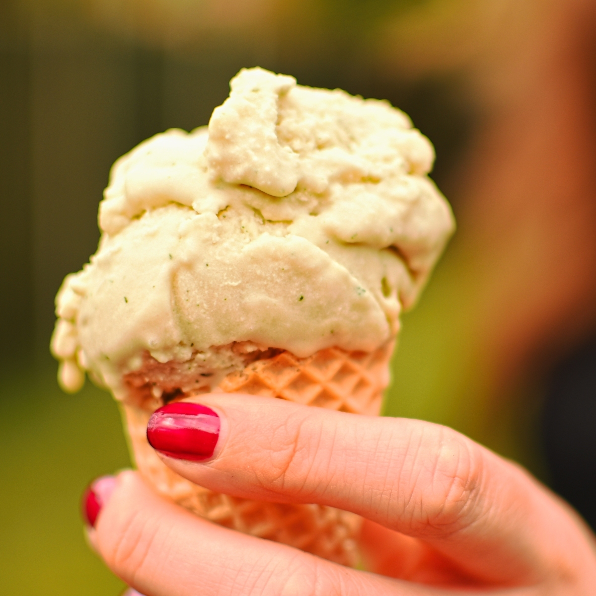 French tarragon and olive oil ice cream