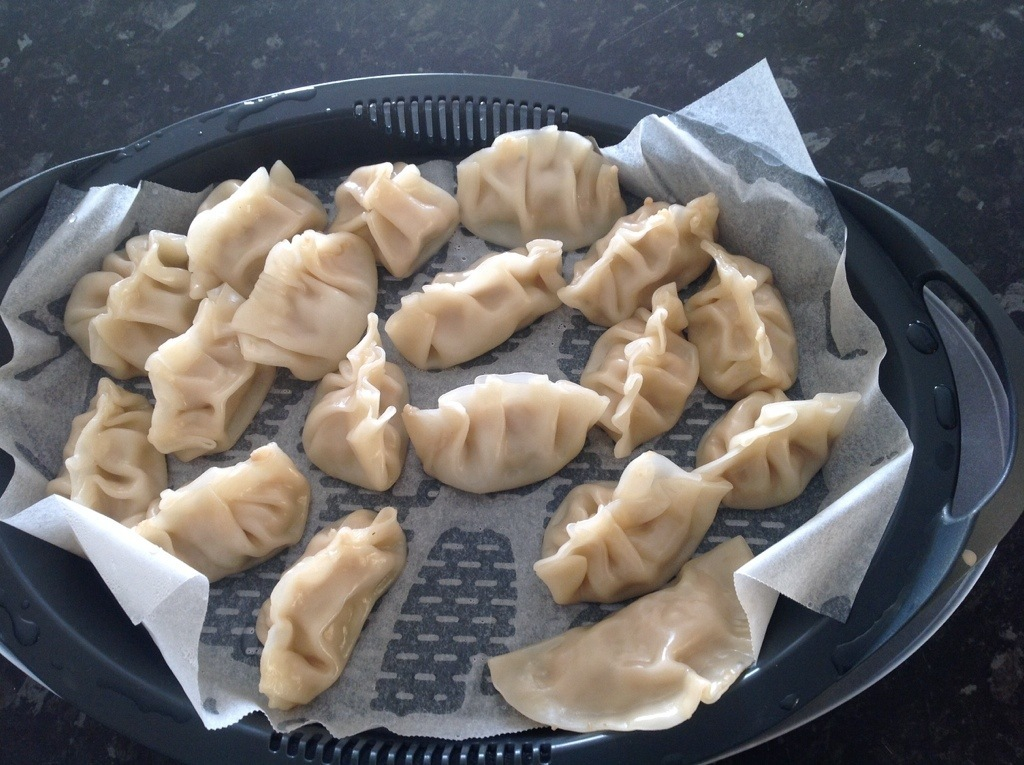 Chicken Dumplings – Asian inspired