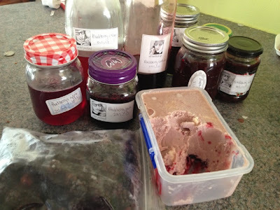 Preserving madness: Blackberries