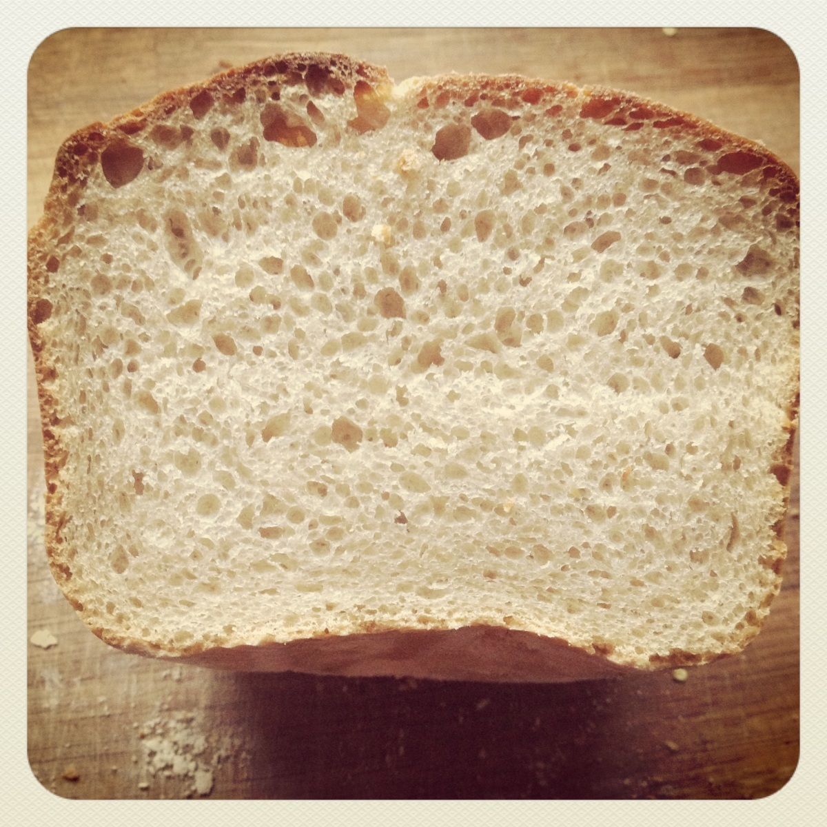 An introduction to 'Dave' the sourdough starter