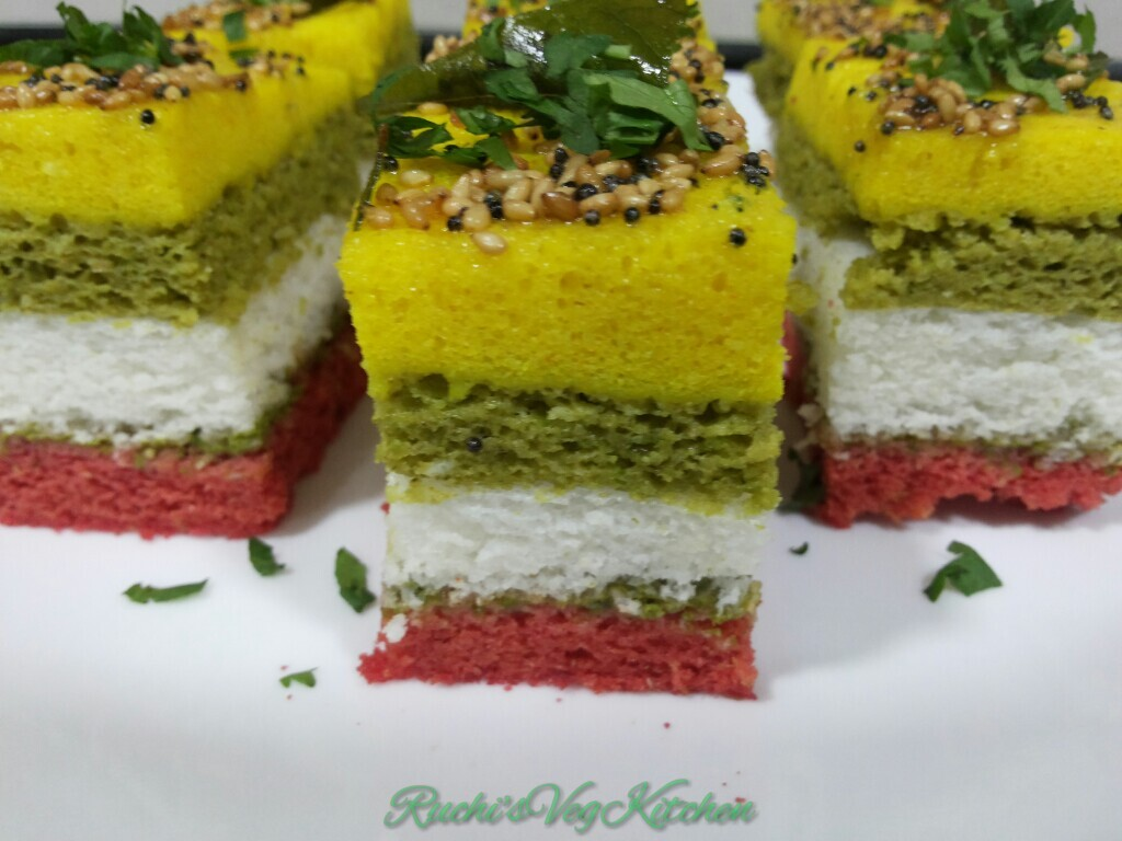 MULTI COLOR SANDWICH DHOKLA