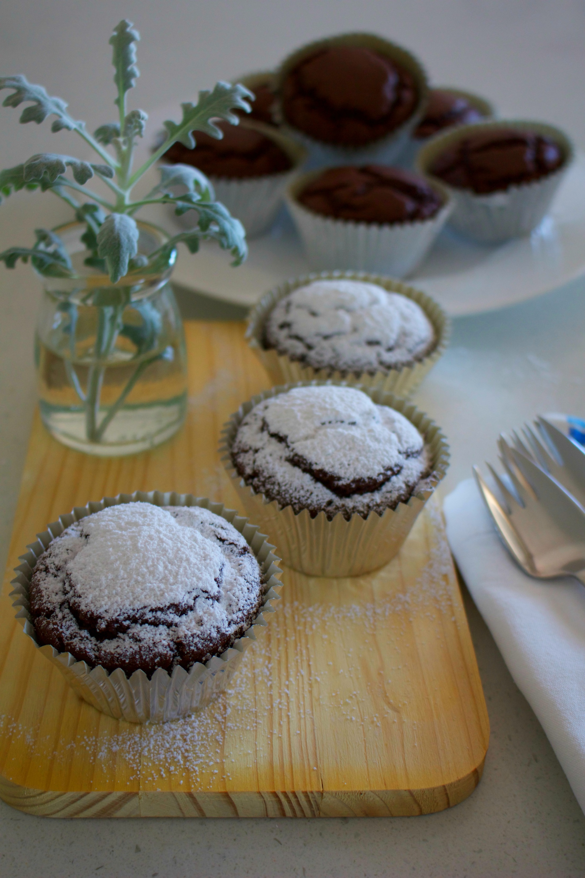 Vegan chocolate and coconut cupcakes