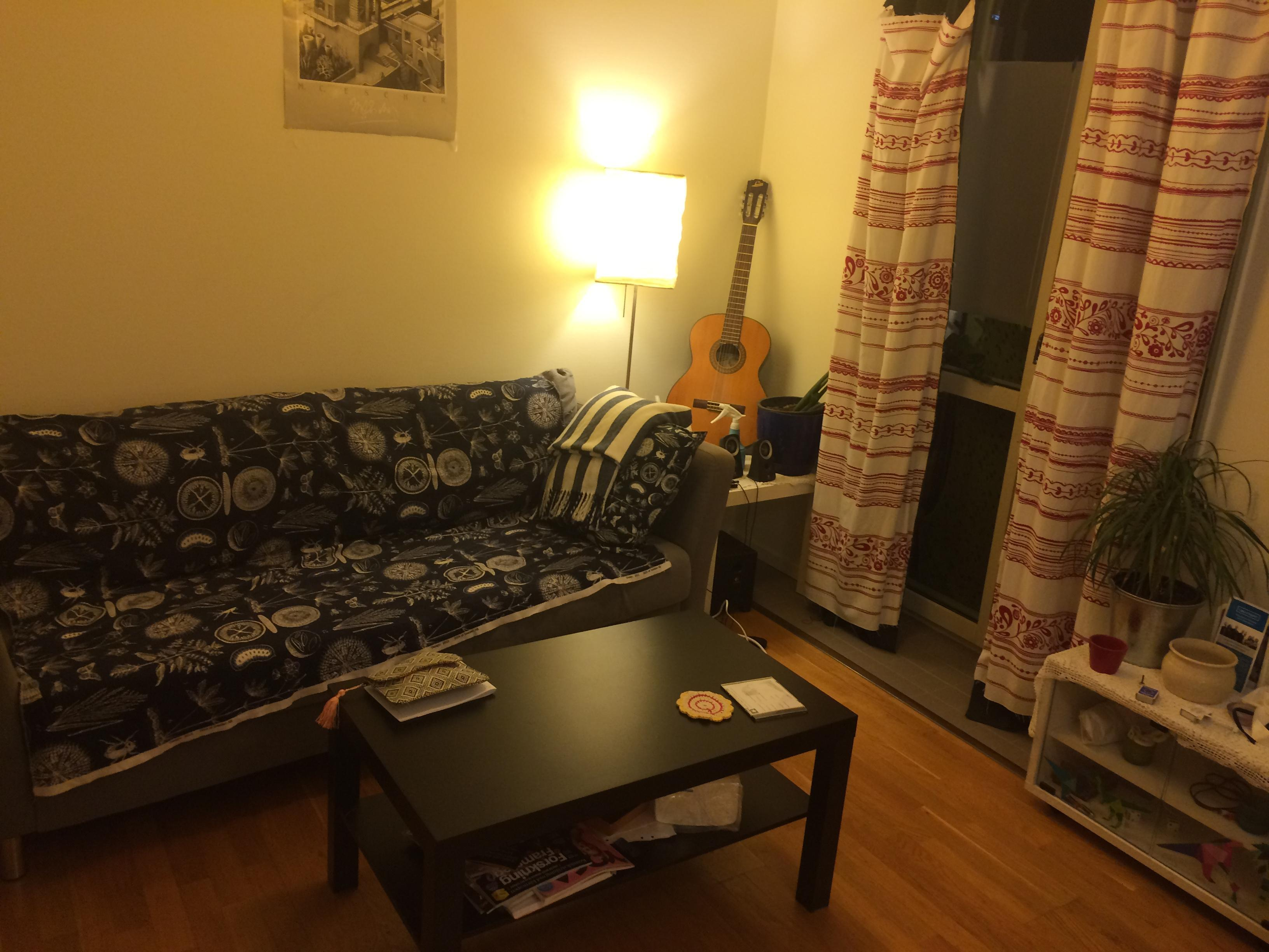 Furnished 1-room apartment for July and August