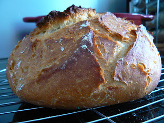pain sans gluten candice kother