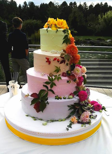 Torta Degradè