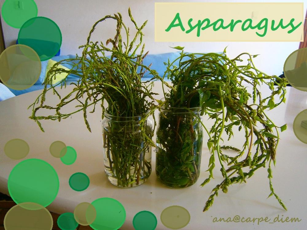 Sezona šparoga / Wild Asparagus Season