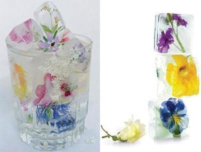 Gelo com Flor Comestível