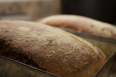 Pão Australiano (tipo Aussie Bread do Outback)