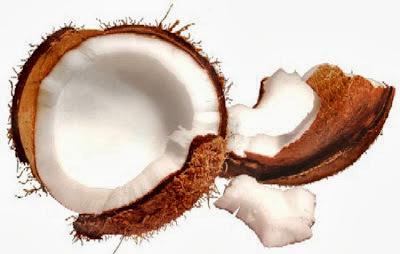 Receita de Manjar de coco com calda de ameixa