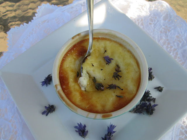 White chocolate and lavender Cream brulée