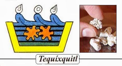 Las 4 Especies de Tequesquite / SAL DE TIERRA.