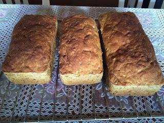 Pão Multi grãos integral