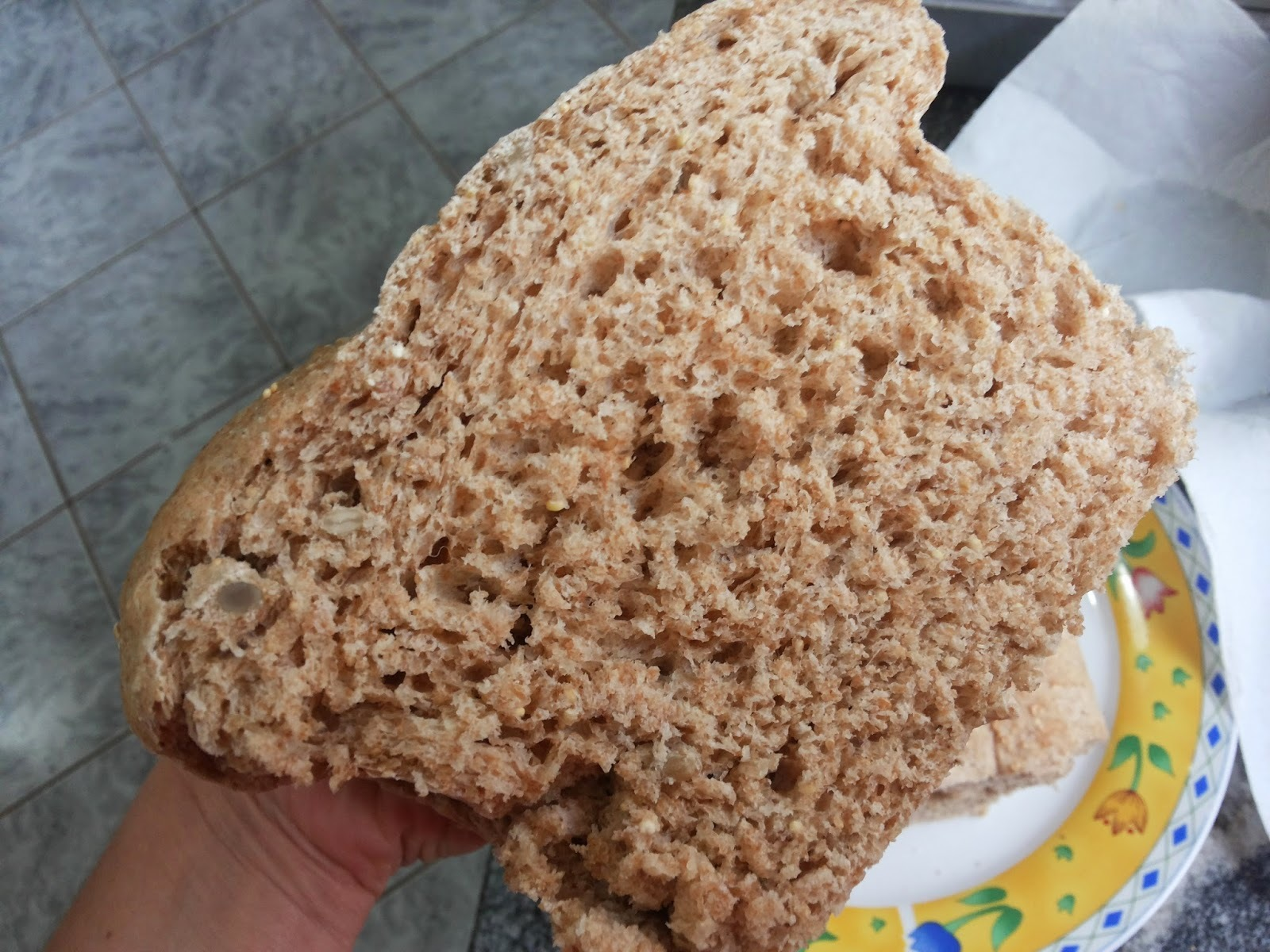 Pão 100% integral com grãos