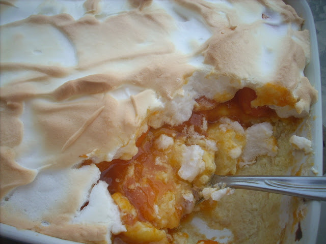 Apricots meringue  pudding