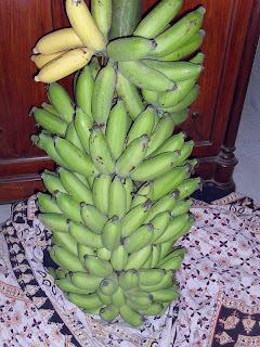GOING BANANAS - Poricha Pazham - Fried Bananas / Banana Fritters