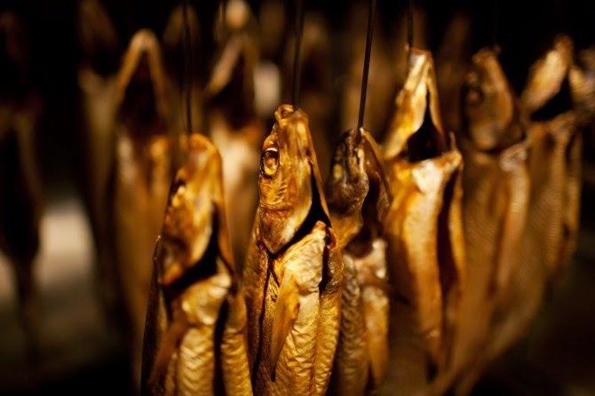 Peixes - Algumas técnicas para sua conservação