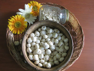 A Curry of Cashew nuts, Mushrooms and Puffed Lotus Seeds
