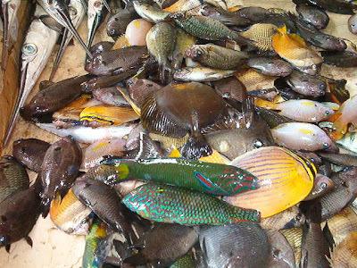Têtes de poisson au curry.