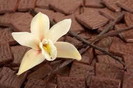 Brownies de famille selon Nigella Lawson