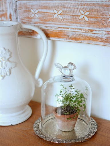 Glass Cloche Styling Ideas