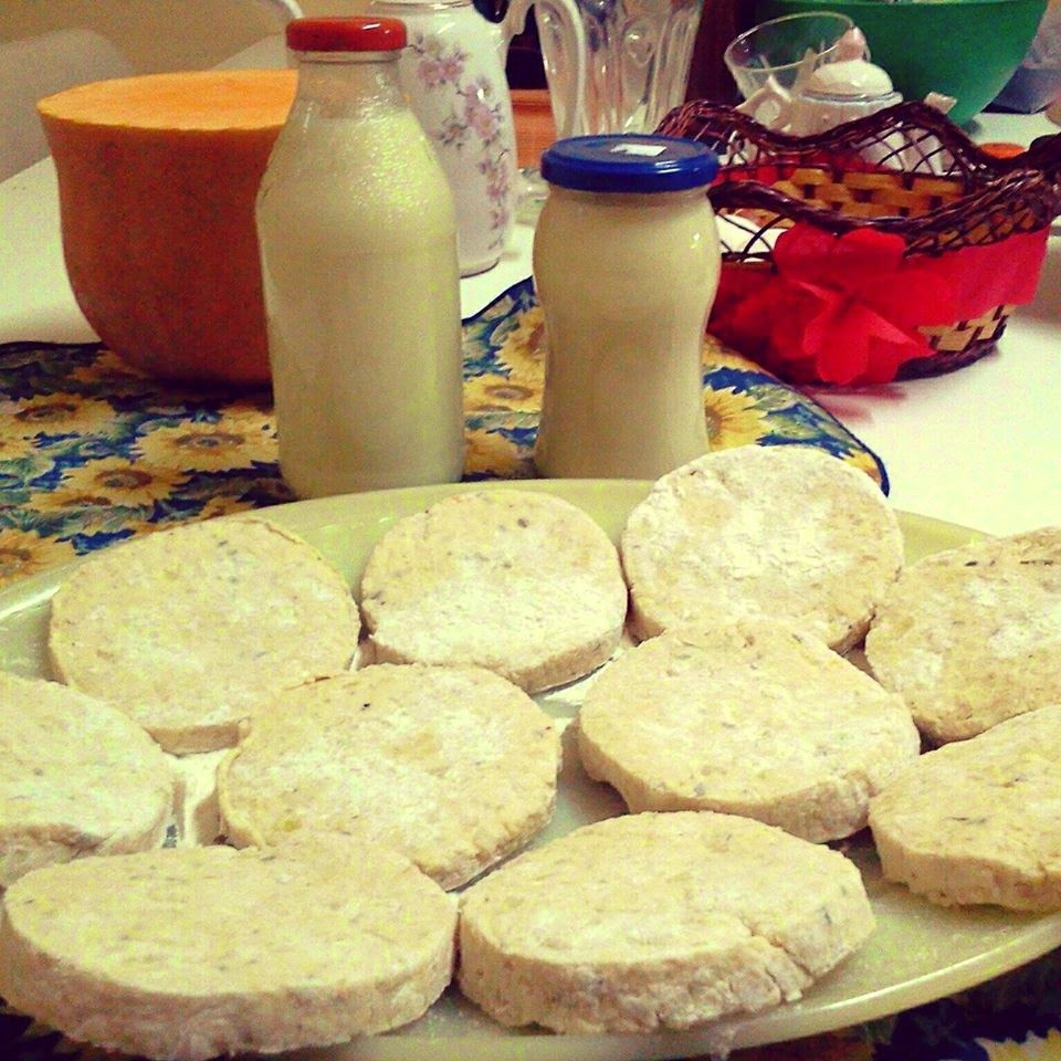 Milanesas/hamburguesas de soja casera (hecha con los porotitos) y leche de soja