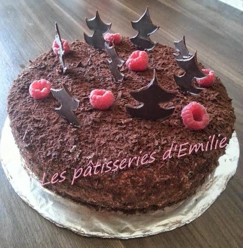 génoise chocolat michalak