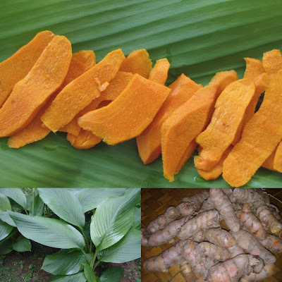 Using Turmeric Leaves