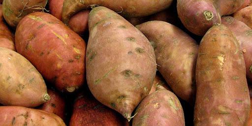 quem tem colesterol alto pode comer batata doce