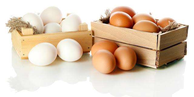 Tudo o que você precisa saber sobre Ovos