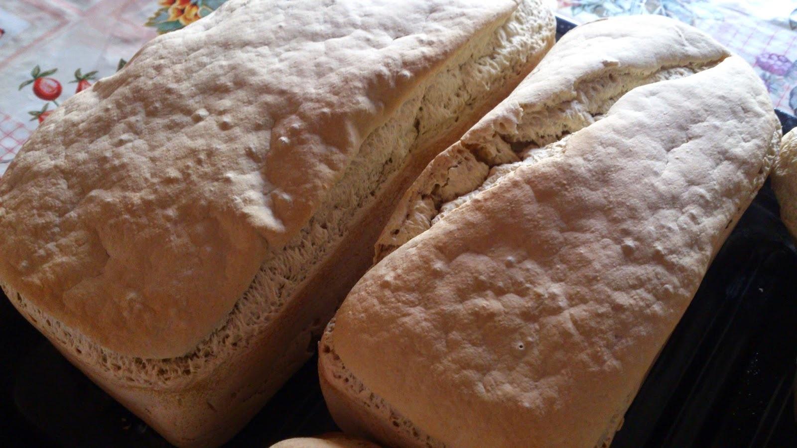 Pão de forma com biomassa de banana e semente de girassol