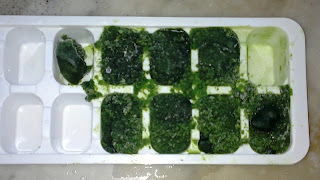Gelinho de Couve (para Suco Verde)