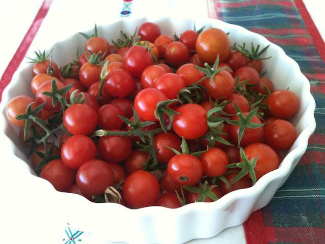 salada morna de tomates - Da minha horta
