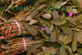 Bredo de coco (prato típico da sexta-feira santa)