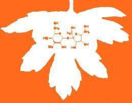 El porque del logo. Azúcar, química y perejil. Los ingredientes: 1er posteo, el azúcar