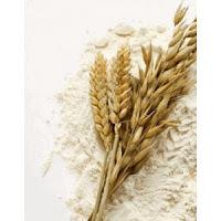 Óleo Vegetal de Germe de Trigo e seus Benefícios