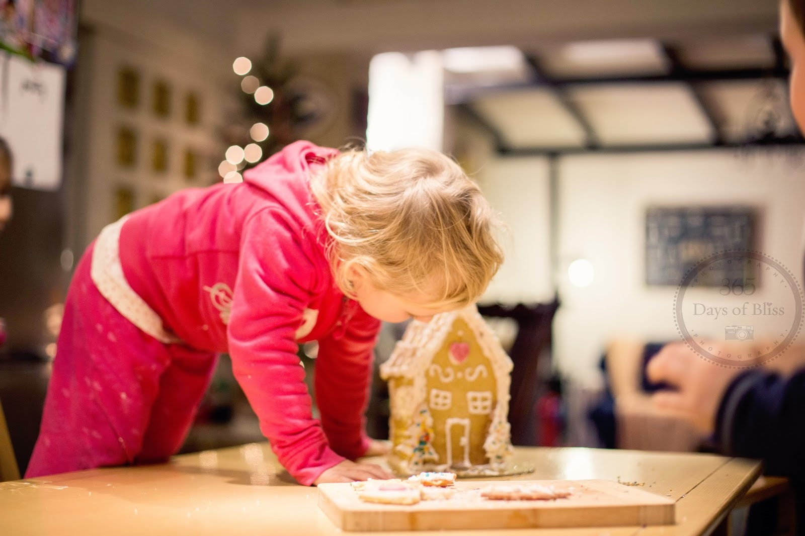 Best Winter Activity for kids: Biscuit House