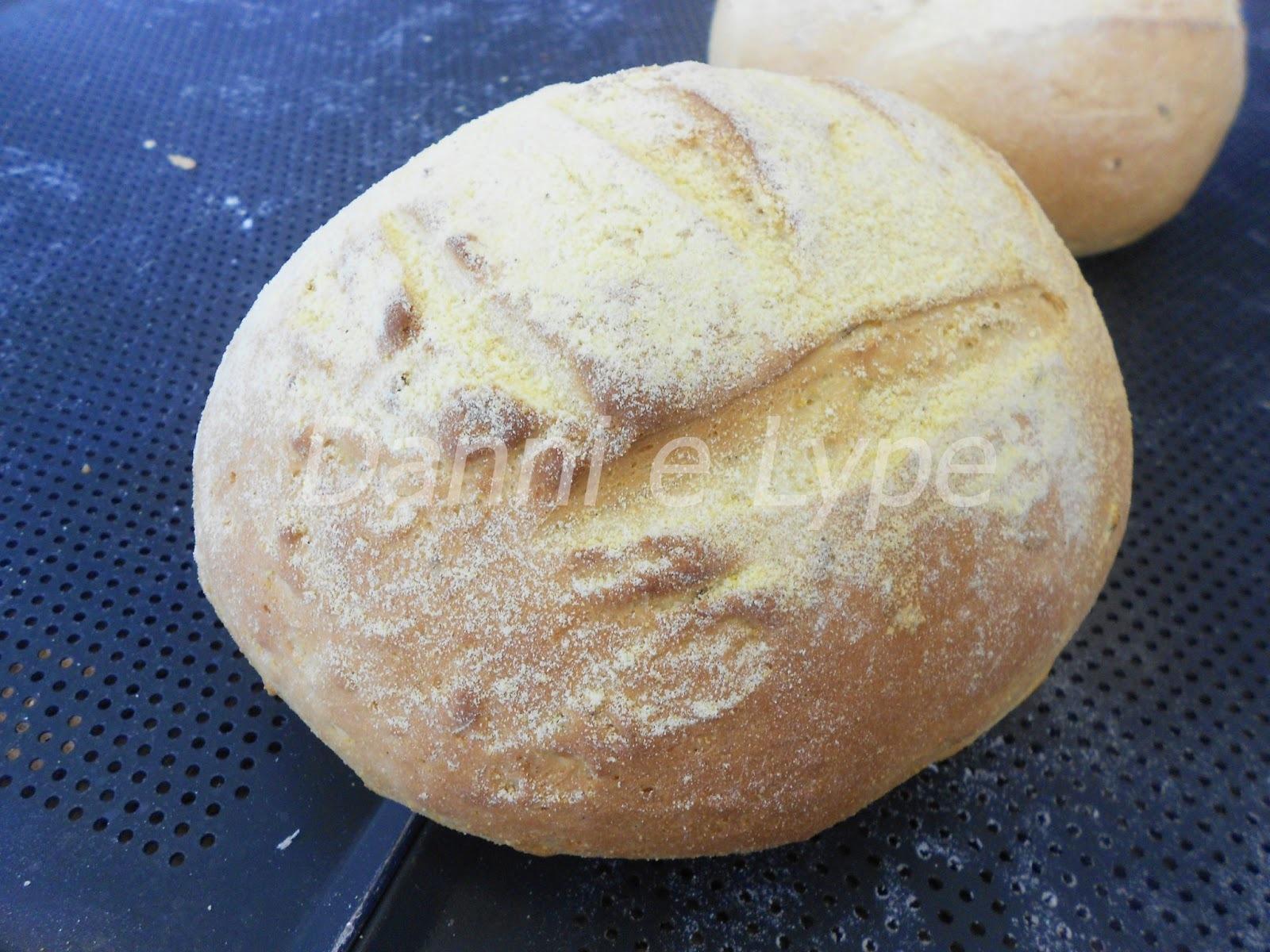 broas de milho com polvilho