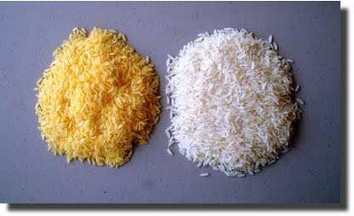 arroz parboilizado na panela de pressão