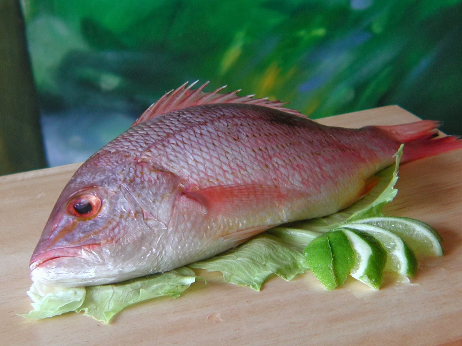 pescado-Bacalao en blanco