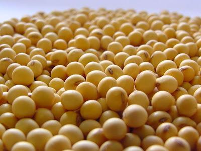 com proteina texturizada de soja