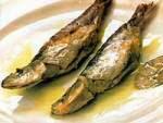 sardinha limpa no forno