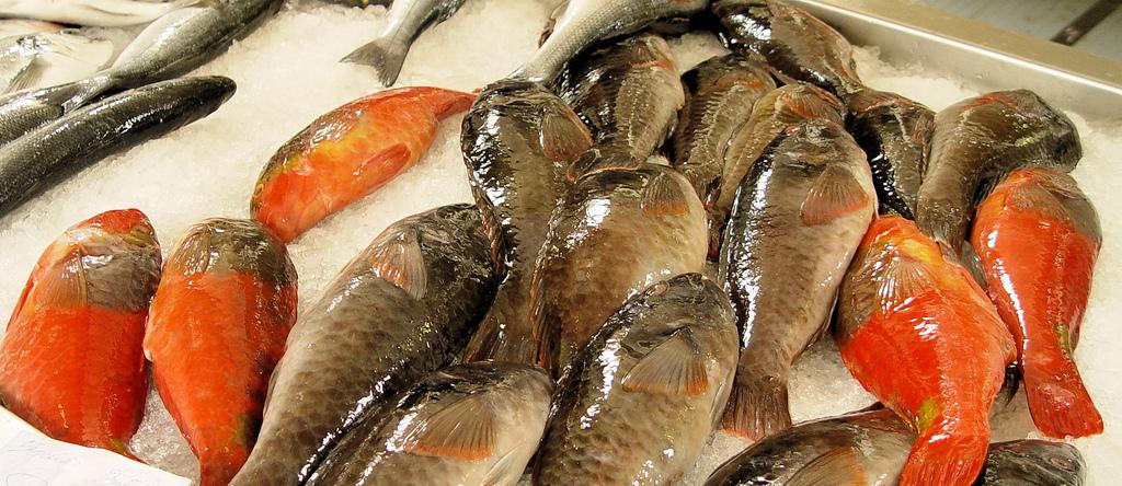 de ovas de peixe cozidas