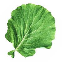 ingredientes para caldo verde para 60 pessoas