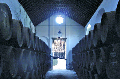 A wine tour of Spain...with teenagers? {Featured}