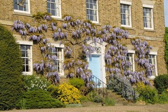 Opening the Doors Of A Wisteria Covered Country Home