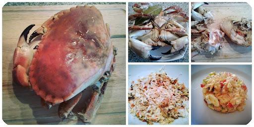 Salpicón de buey de mar