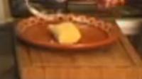 Ricos Tamales de Elote