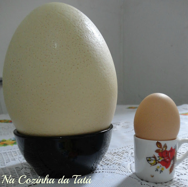 com ovo de avestruz